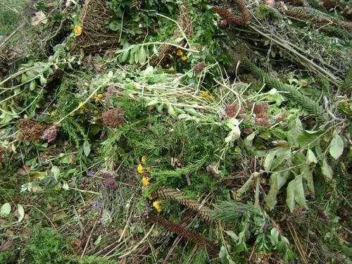 Tuin en groen afval
