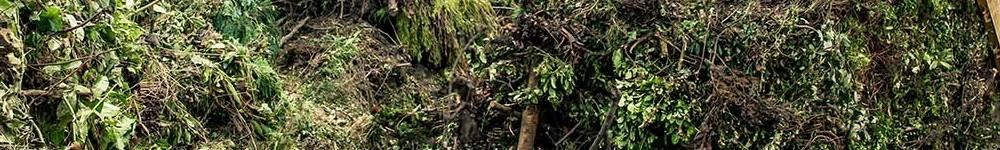 Tuin-en-groen-afval